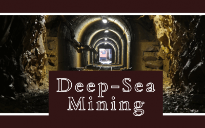 Deep-sea mining is making seabed the hottest real estate on Earth